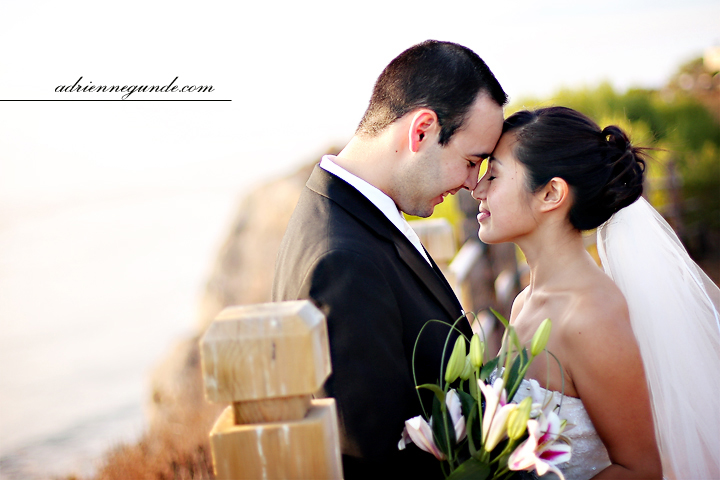 pointe vicente interpretive center wedding picture