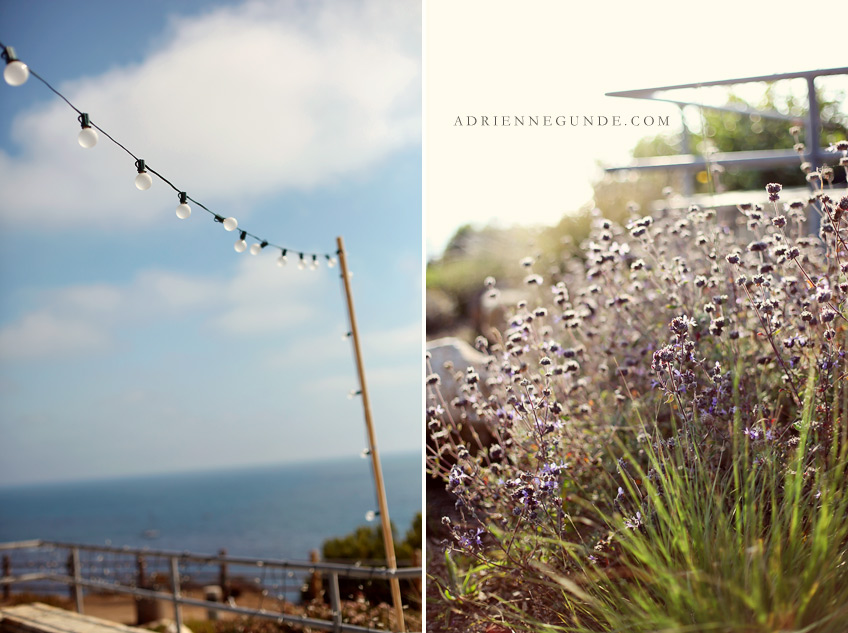 pointe vicente wedding